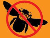 Good Bye Bees!