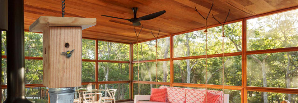 Save Your Home From Destructive Carpenter Bees
